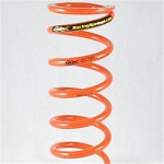 Pac Racing Springs 3