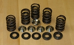 Lightweight Racing Valve Spring Kits for Yamaha® YFM™ 660R/F ATV/UTV