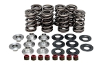 Turbo Valve Spring Kit - Polaris RZR XP 1000