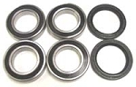 Carrier Replacement Bearing And Seal Kit