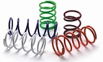 EPI Primary Clutch Springs - Teryx 750