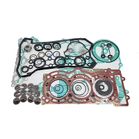 Maverick X3 Complete Engine Gasket Kit