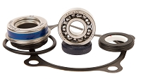 Water Pump Rebuild Kit - Rhino 660
