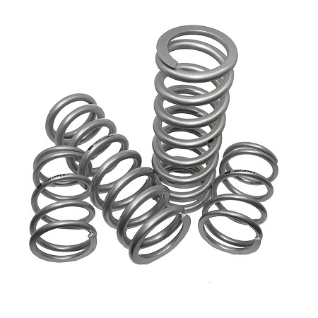 Talon 1000R Dual Rate Spring Kit - WR Edition